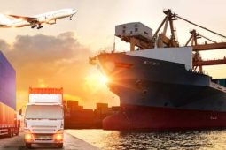 Freight Forwarding UK